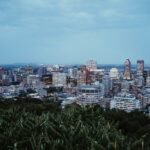 Enrico Frank Andreoli Montreal and What It's Like To Live There